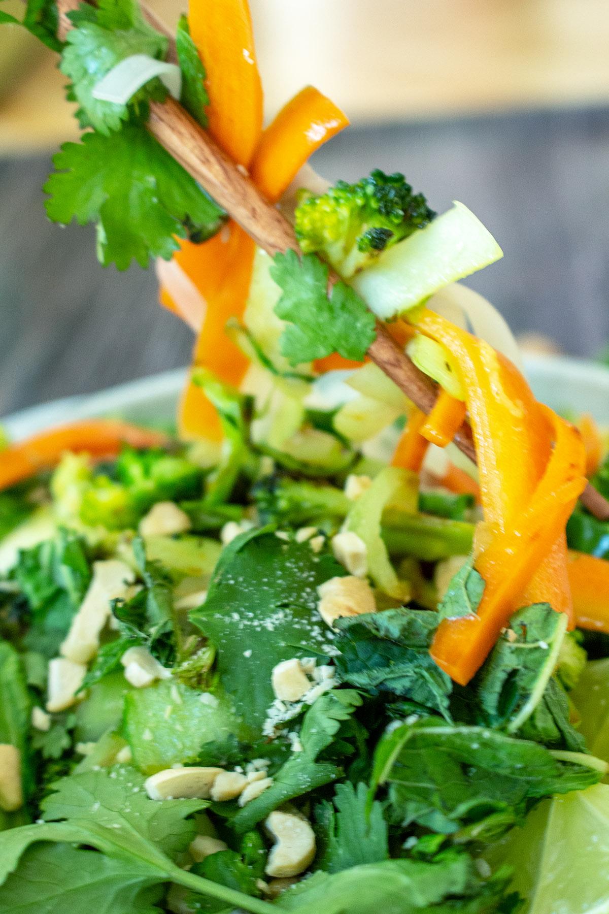 veganes Pho, vegetarisches Pho, vegane vietnamesische Reisnudelsuppe, veggie pho, vegetarian pho