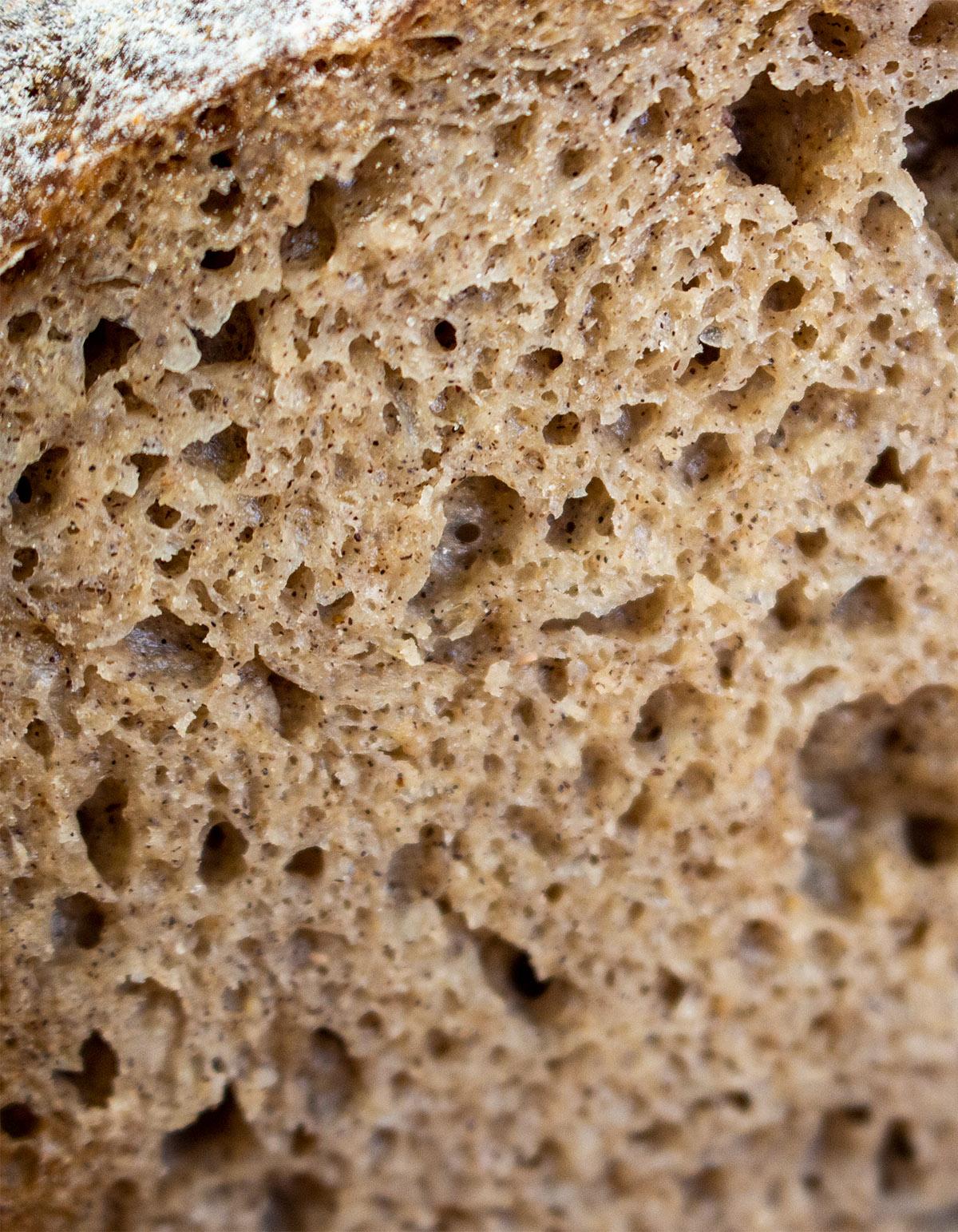 glutenfreies Brot backen, glutenfreies Sauerteigbrot, perfekte Krume, Buchweizenbrot, vegan backen, gluten-free vegan sourdough bread, the perfect crumb